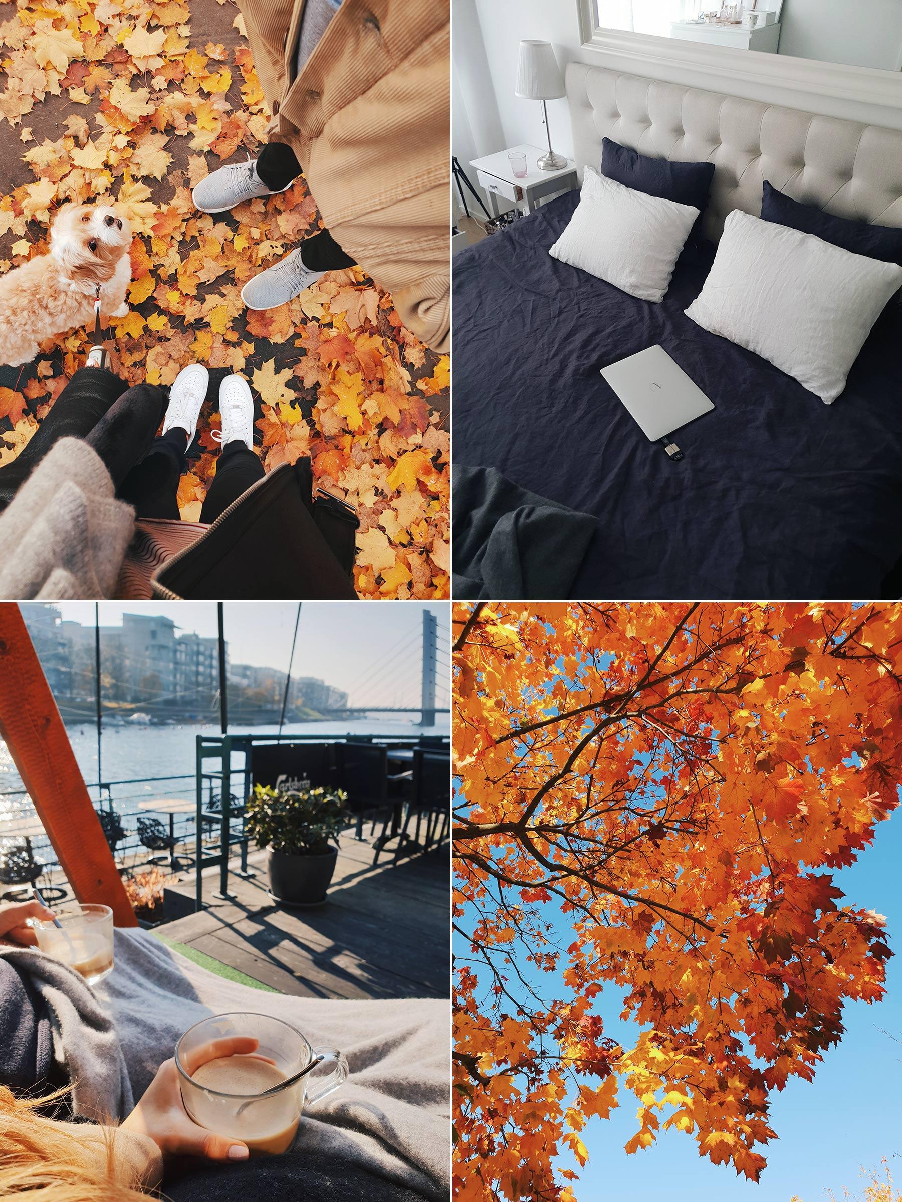October through my phone